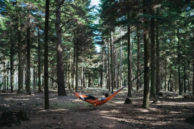 Five great places to go on a hammock trip in Oslo this summer