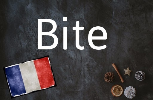 French word of the Day: Bite