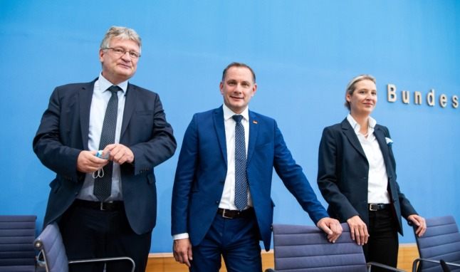 German far-right AfD co-chief quits after election disappointment