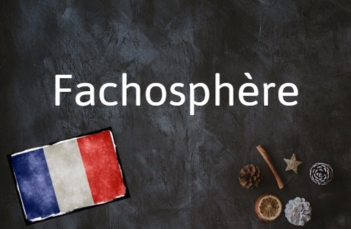 French word of the day: Fachosphère