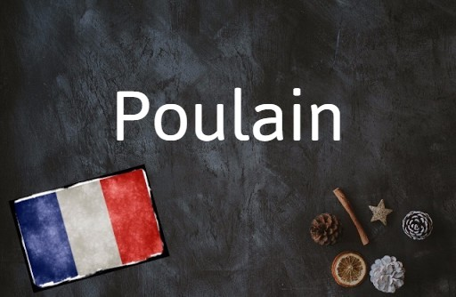 French word of the day: Poulain