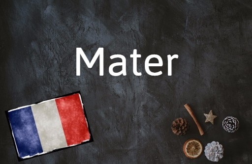 French word of the day: Mater